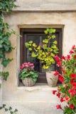 Flower-bedecked window Royalty Free Stock Image