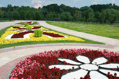Flower beds Stock Photos
