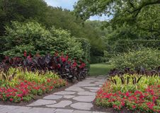 Flower beds at the Dallas Arboretum and Botanical Garden. Pictured are colorful flower beds at the Dallas Arboretum and Botanical Garden.  From front to back are Stock Images