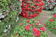 The flower beds in formal of garden. A flower beds in formal of garden Royalty Free Stock Photos