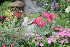 Flower beds in formal garden. The  flower beds in formal garden Royalty Free Stock Images