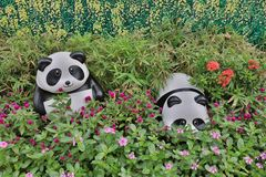 Flower beds in formal garden with panda. Look Royalty Free Stock Photography