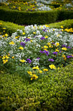 Flower Beds - landscaped garden Stock Photos