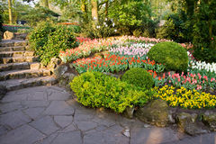 Flower beds in a park Royalty Free Stock Images