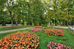 Flower beds. Park of Bad Hall Stock Image