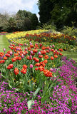 Flower Beds Park Garden Display Royalty Free Stock Photos