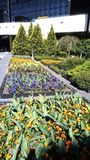 Flower beds in a recreation area airport stock image