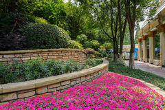 Flower-beds in shade of trees Royalty Free Stock Images