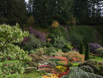 Flower beds  and track for tourists Stock Photography