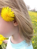 Flower behind ear in field stock photo