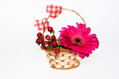 Flower and berries in the basket Stock Image