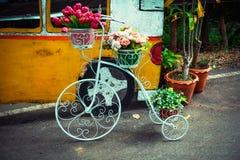 Flower bike Royalty Free Stock Photo