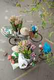 Flower Bike Vendor, Hanoi, Vietnam Stock Image