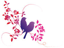 Flower and bird Stock Image