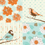 Flower & bird background Stock Photos