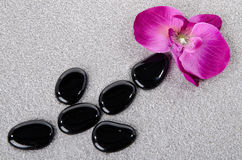Flower with black pebbles on the sand Royalty Free Stock Photo