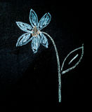 Flower on blackboard Stock Image