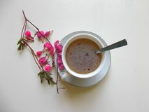 Tea in a white Cup, with pink flowers. Flower the bleeding heart next to the tea royalty free stock images