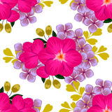 Flower blossom. Abstract elegance seamless pattern Stock Photography