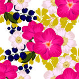 Flower blossom. Abstract elegance seamless pattern Royalty Free Stock Photography
