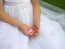 Flower blossom in hand. A flower girl holding a dogwood blossom in her hands Royalty Free Stock Photos