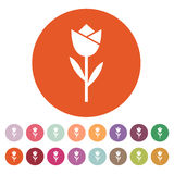 The flower, blossom icon. Plant and garden symbol. Flat Stock Image