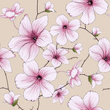 Flower blossom illustration Stock Image