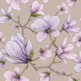 Flower blossom pattern Stock Images