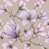 Flower blossom pattern. This is vector of flower pattern seamless Royalty Free Stock Photography