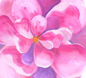 Flower blossom primrose anemone  oil painting watercolor seamless wallpaper Stock Photography