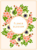 Flower blossom. Romantic botanical invitation. Royalty Free Stock Photos