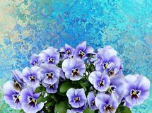 Flower, Blue, Flowering Plant, Plant royalty free stock photo