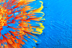Flower in blue paint Stock Image