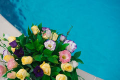 Flower at the blue pool, celebration. Colorful flower at the blue pool Royalty Free Stock Photo