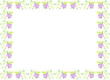 Flower bluebell drawing on paper Royalty Free Stock Photos