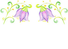 Flower bluebell drawing on paper Royalty Free Stock Images