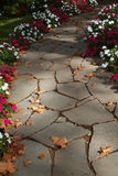 Flower boardered rock path Stock Photos