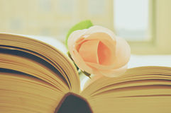 FLOWER AND BOOK. A pink flower is on a book Royalty Free Stock Photo