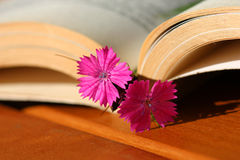 Flower bookmark Royalty Free Stock Photos