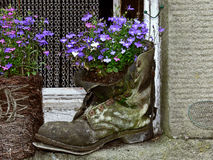Flower boot. An old boot filled with blue flowers Royalty Free Stock Photos