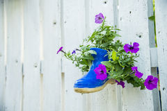 Flower in boot on the wooden fence Stock Photo