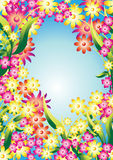 Flower border 1. Border of many coloured blooms Royalty Free Stock Photography