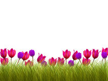 Flower border. The many flower border pieces Stock Image