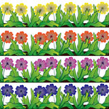 Flower border. Four  rows of flower illustration borders of various colours Stock Image