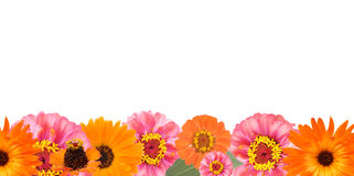 Flower border Royalty Free Stock Photos