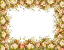 flower border frame Royalty Free Stock Photography