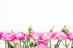 Flower border frame of pink roses and buds with copy space on white background. Flat lay, Top view. stock photography