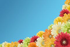 Flower border on sky blue Stock Photos