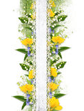 Flower border on the white background Stock Photo