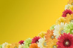 Flower border on yellow Stock Images